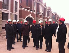 滕一龙董事长赴天津调研房地产项目